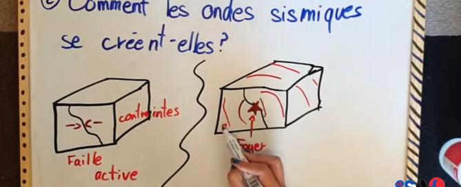 capsules vidéos SVT