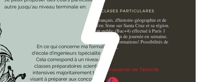 Clases particulares nativos franceses