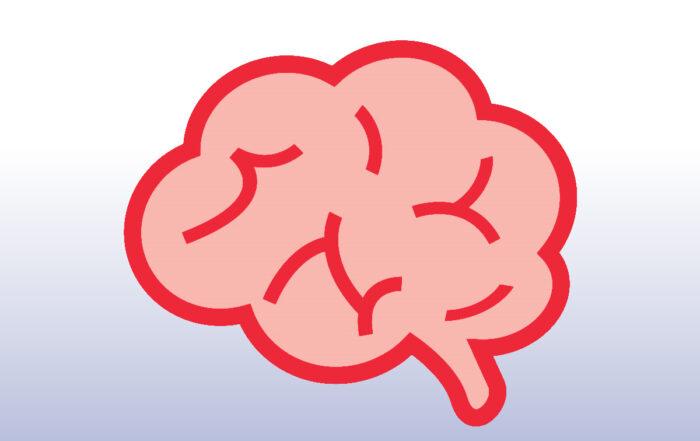 Proyecto neurociencias