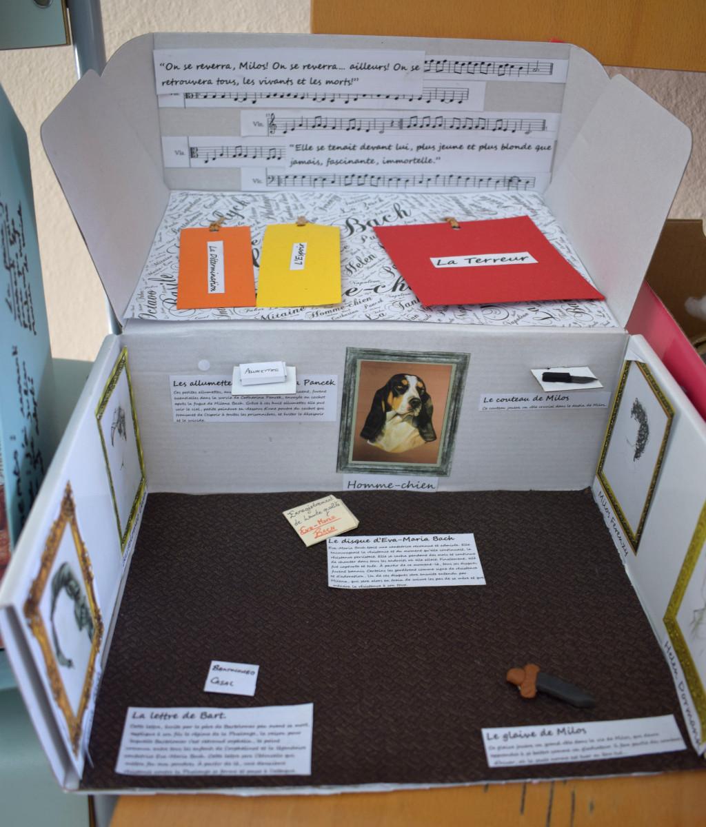 Caja de lectura 6